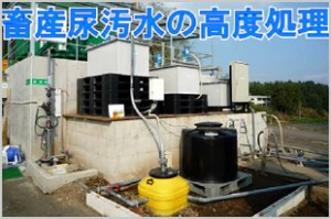 畜産尿汚水の高度処理